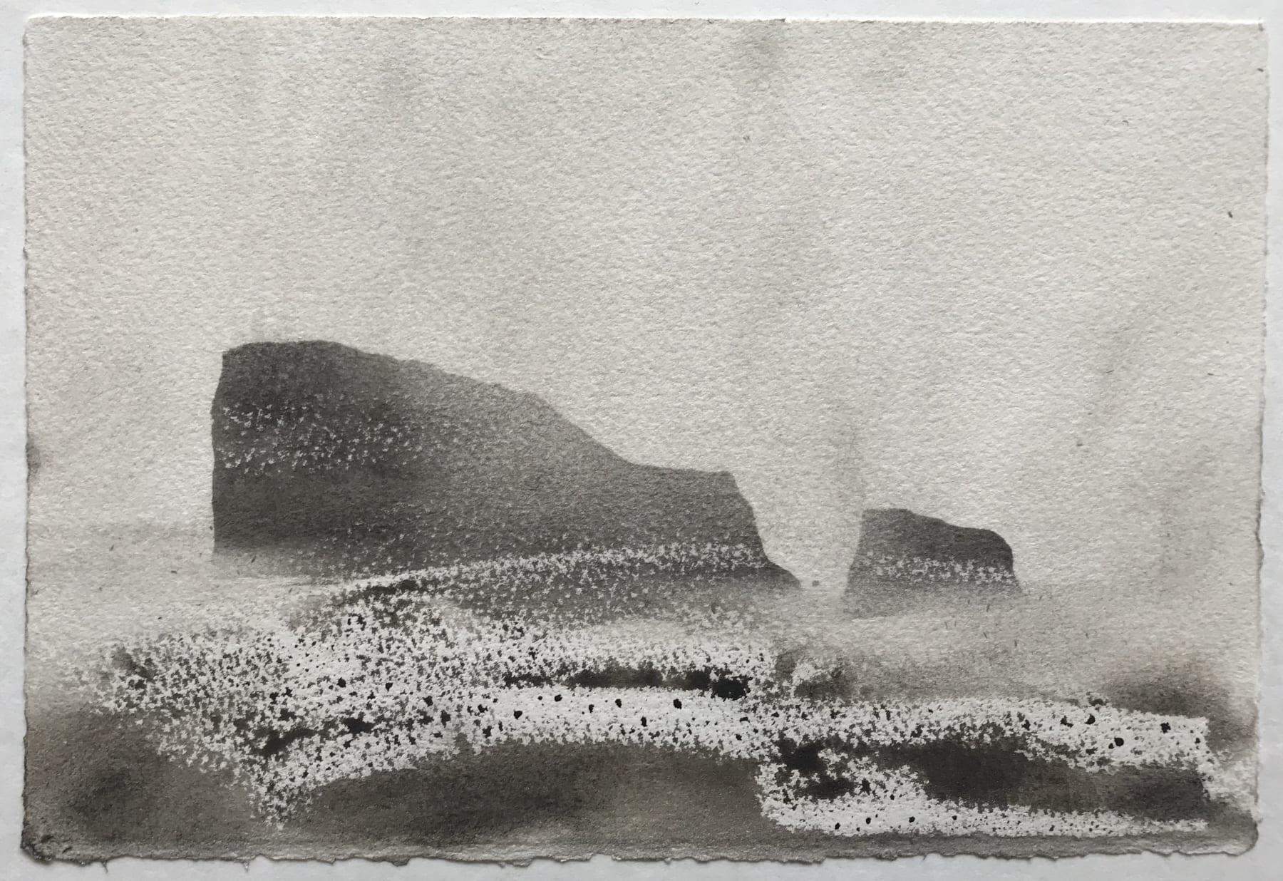 Jason Hicklin, East Tump, Grassholm Island, 2020