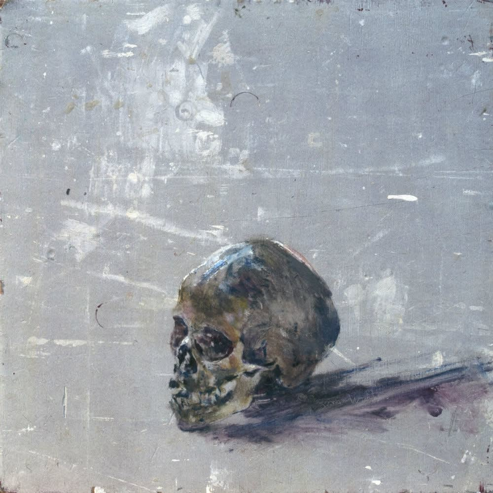 Sam Drukker - Schedel met paars - 2017 - olieverf op paneel - 52 x 52 cm