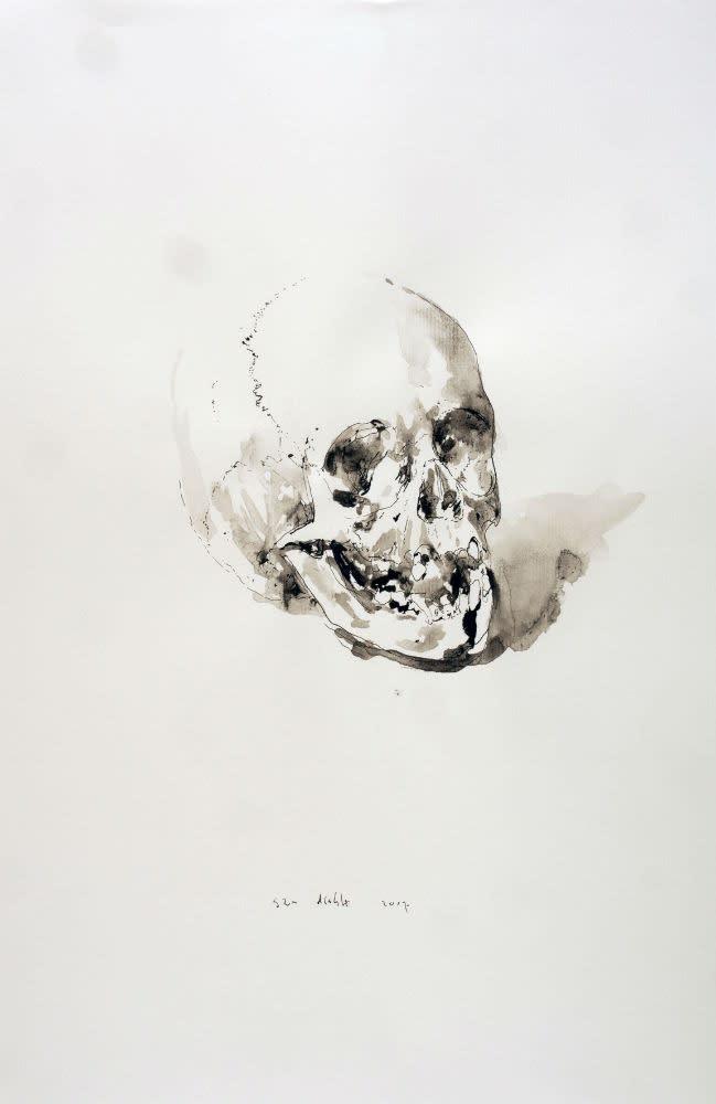 Sam Drukker - Studie voor schedel - 2017 - gewassen inkt op papier - 50 x 35 cm