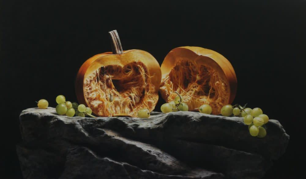 Pumpkin - 2016 - olieverf op paneel - 54 × 91 cm