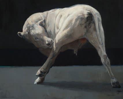 Pieter Pander - Witte stier - 2016 - olieverf op paneel - 40 x 60 cm