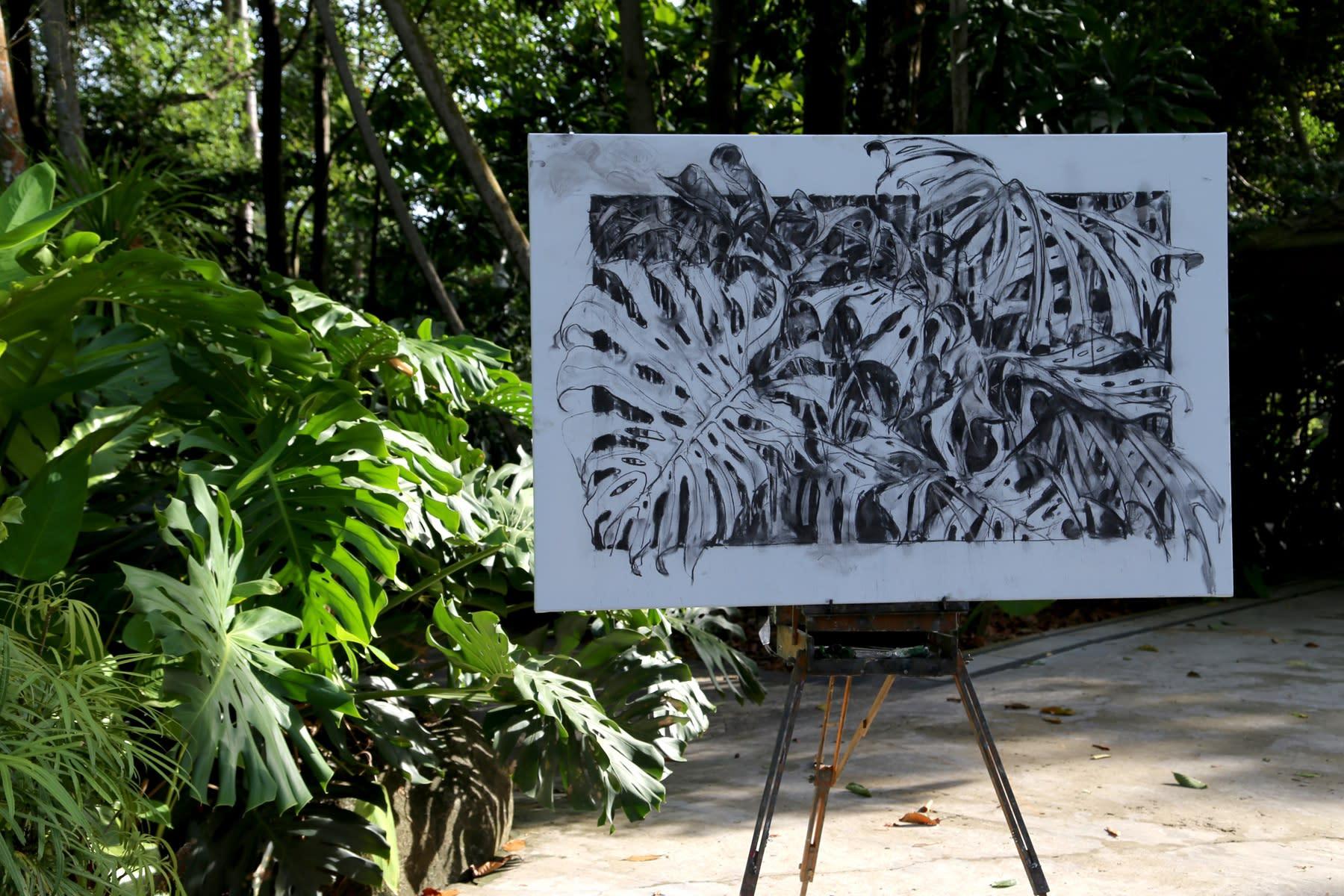 30 AUGUST 2019 SARACA STREAM WALK, SINGAPORE BOTANIC GARDENS Green is the New Black photo: Agata Byrne