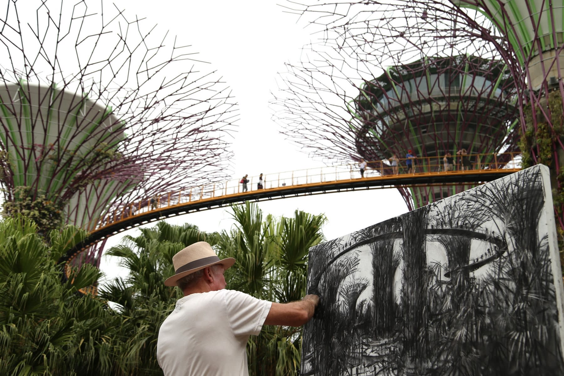 23 SEPTEMBER 2019 GARDENS BY THE BAY, SINGAPORE Supertree Grove photo: Agata Byrne