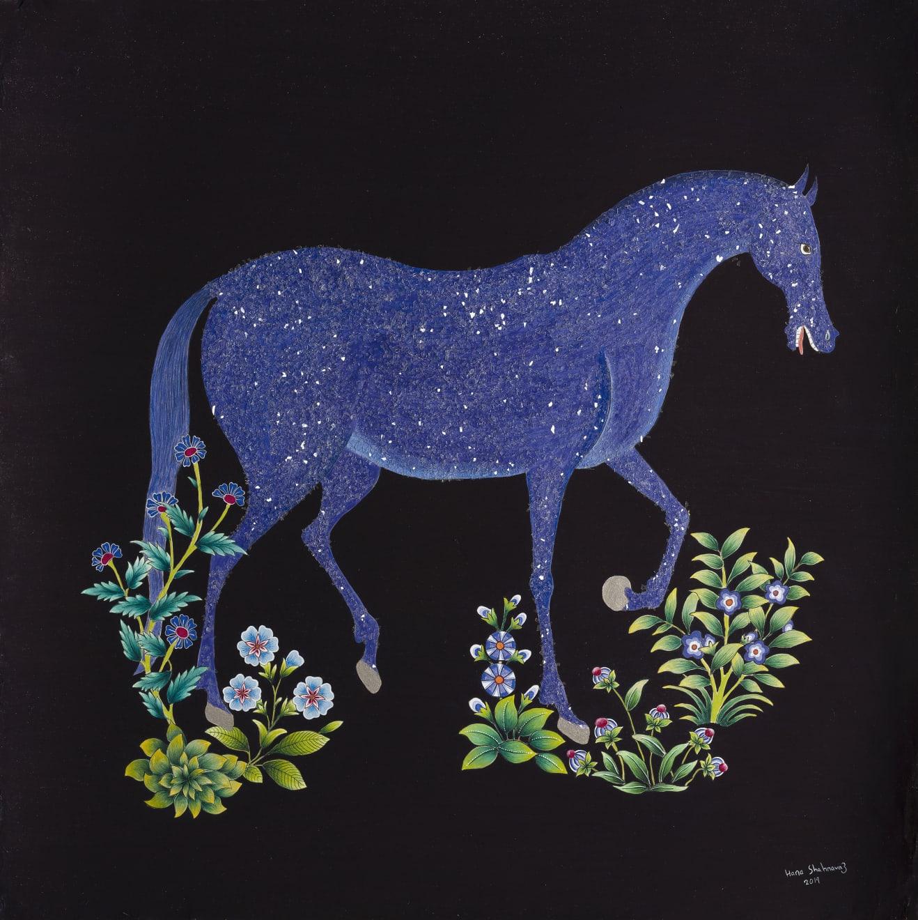 Hana Shahnavaz, Sky Horse , 2019