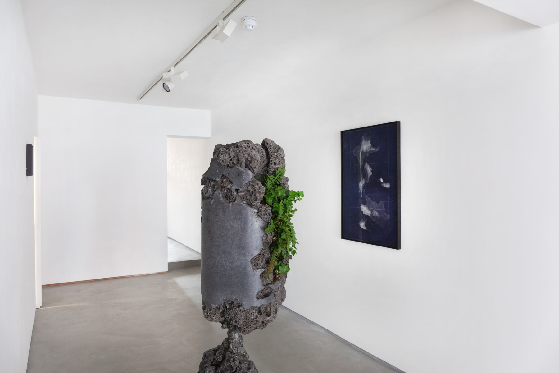 From Nature, Installation view 2021
