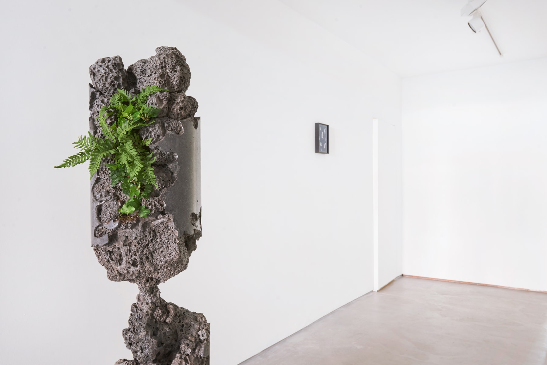 From Nature, Installation view 2021, Image by Scarlet Page