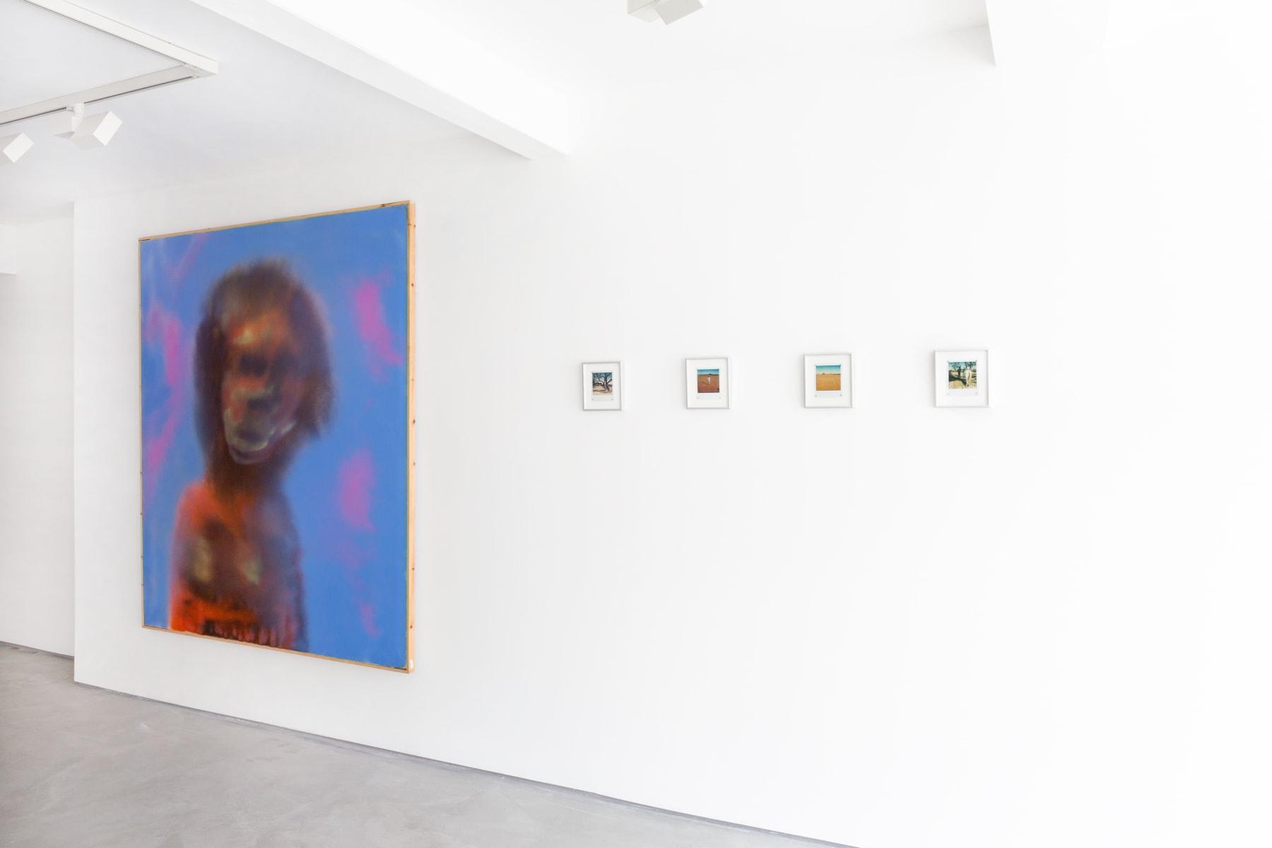 Sir Sidney Nolan - Polaroids, Informality, Installation view 2021