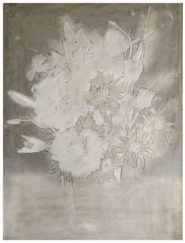 Shelter Serra Flowers, 2014