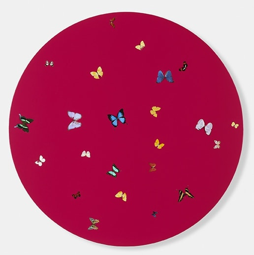 Damien Hirst The Shock of the New, 2006