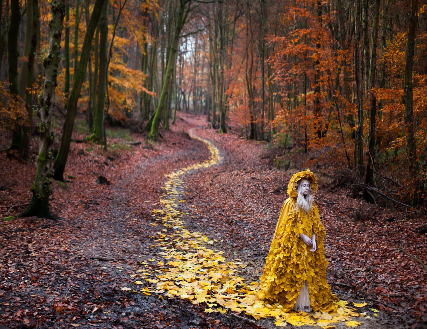 Kirsty Mitchell The Journey Home, 2013