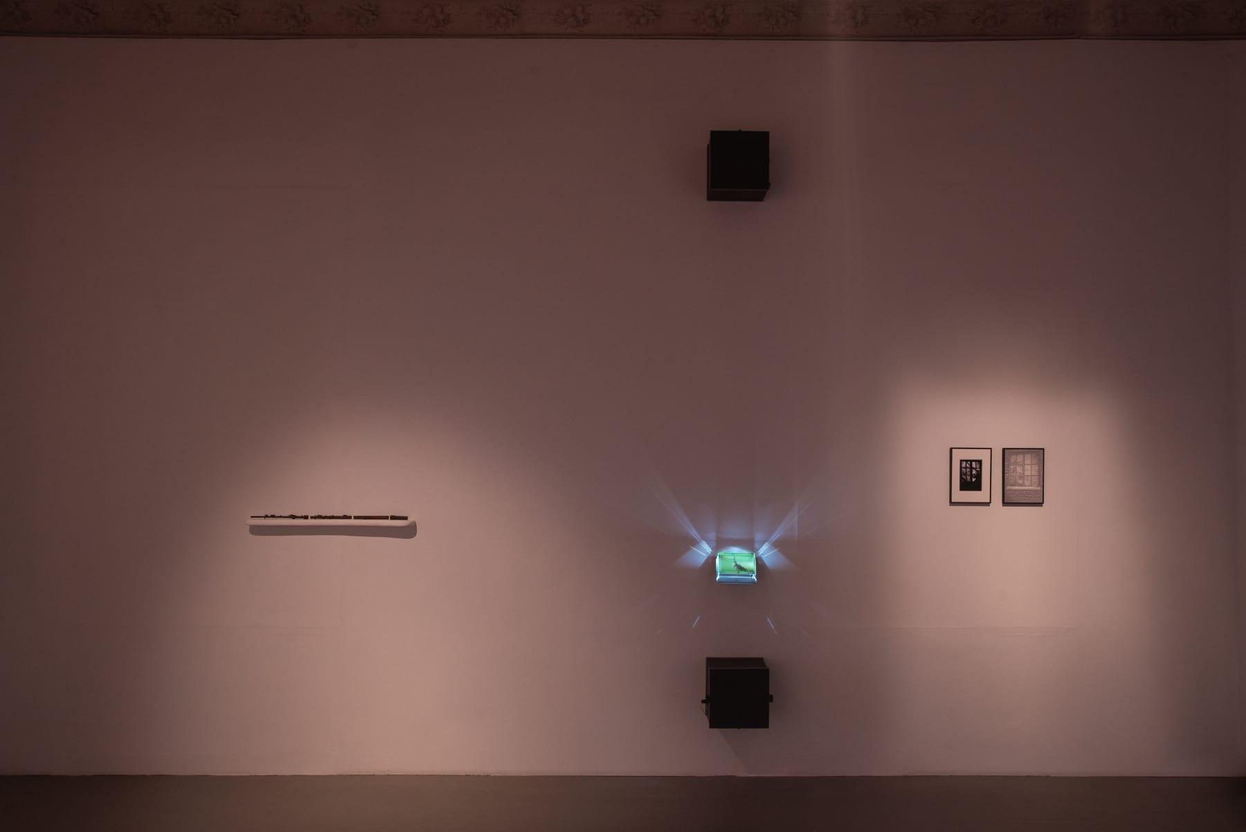 Deimantas Narkevičius, installation view Photographed by Laurynas Skeisgiela