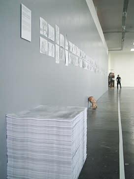 26th Sao Paulo Biennial, Sao Paulo, 2004 Lithuanian representation