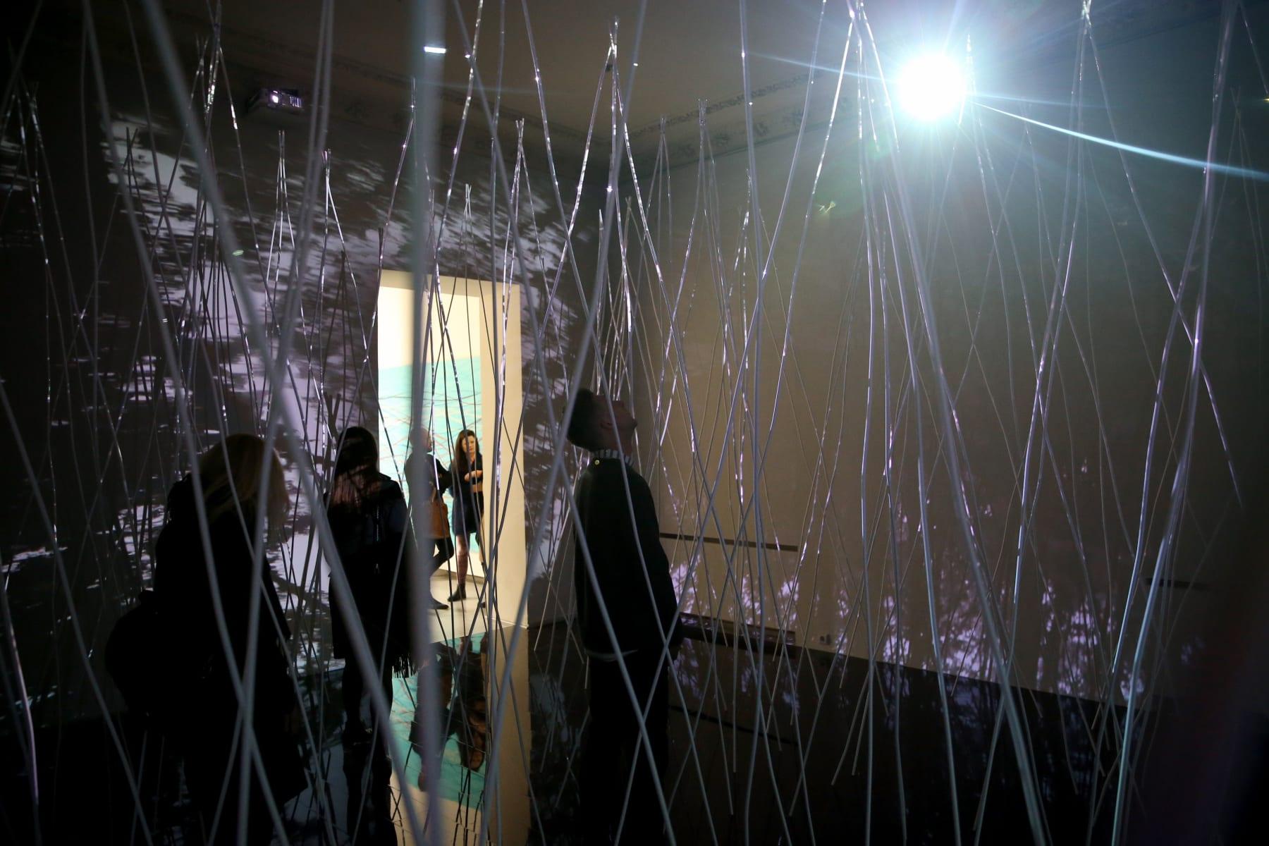 Galerija VARTAI, 2011 Žilvinas Kempinas's solo exhibition