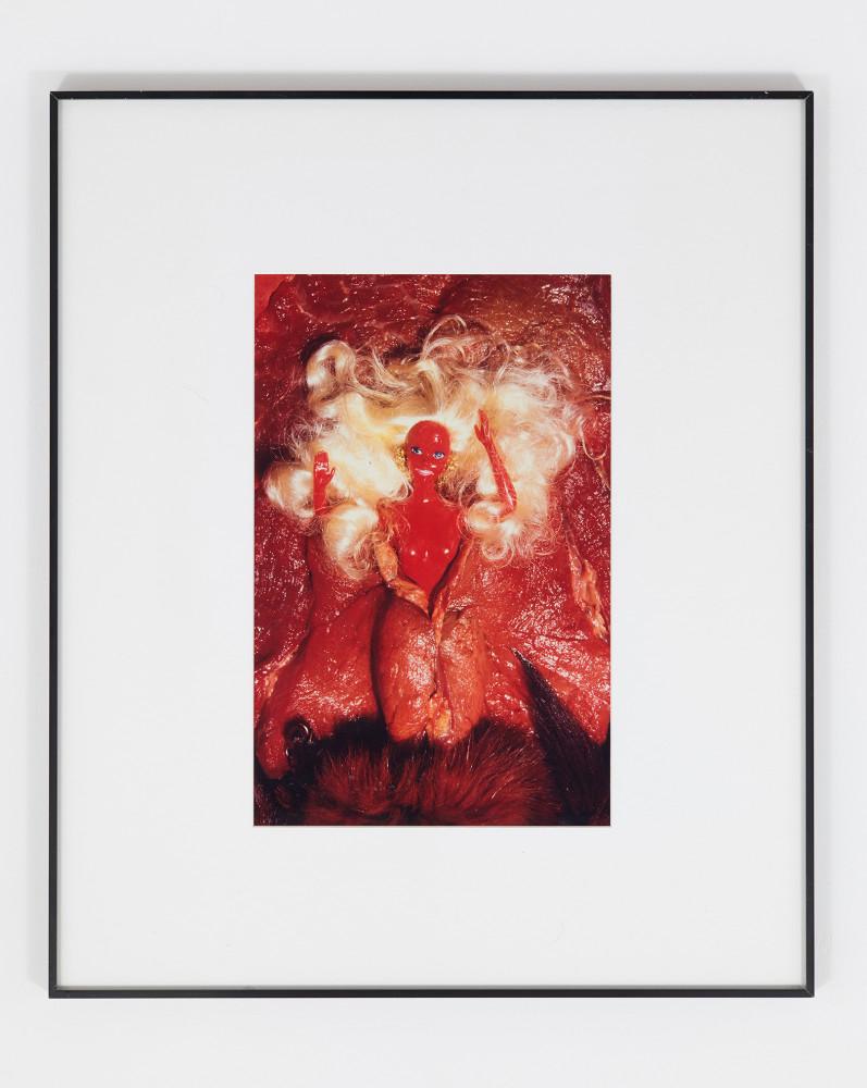 <div class=&#34;artist&#34;><strong>Helen CHADWICK</strong></div> 1953 - 1996 <div class=&#34;title&#34;><em>Birth of Barbie</em>, 1993</div> <div class=&#34;medium&#34;>Cibachrome photograph, unique in size.</div> <div class=&#34;dimensions&#34;>40 x 26 cm (image size)<br />64 x 54 cm (sheet size)</div> <div class=&#34;edition_details&#34;></div>