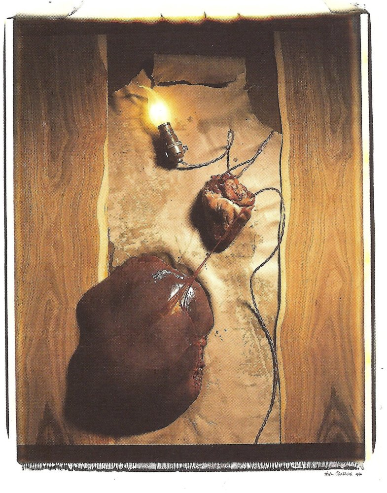 <div class=&#34;artist&#34;><strong>Helen CHADWICK</strong></div> 1953 - 1996 <div class=&#34;title&#34;><em>Meat Abstract No. 5: Heart of Liver</em>, 1989</div> <div class=&#34;signed_and_dated&#34;>Signed AP</div> <div class=&#34;medium&#34;>Polaroid, silk mat</div> <div class=&#34;dimensions&#34;>81 x 71 cm<br />98 x 77 cm overall</div> <div class=&#34;edition_details&#34;>Edition of 4 plus AP</div>