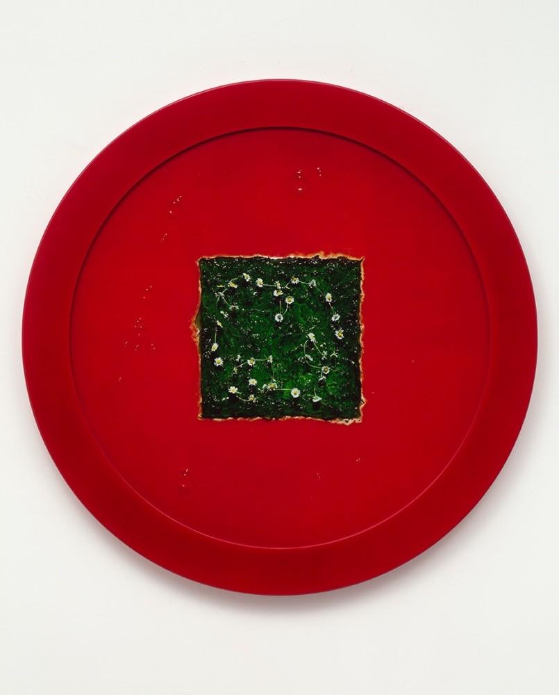 <div class=&#34;artist&#34;><strong>Helen CHADWICK</strong></div> 1953 - 1996 <div class=&#34;title&#34;><em>Wreath to Pleasure No 7</em>, 1992-1993</div> <div class=&#34;medium&#34;>Cibachrome print on aluminium faced MDF in a glazed powder coated steel frame</div> <div class=&#34;dimensions&#34;>110 (diameter) x 5 cm</div>