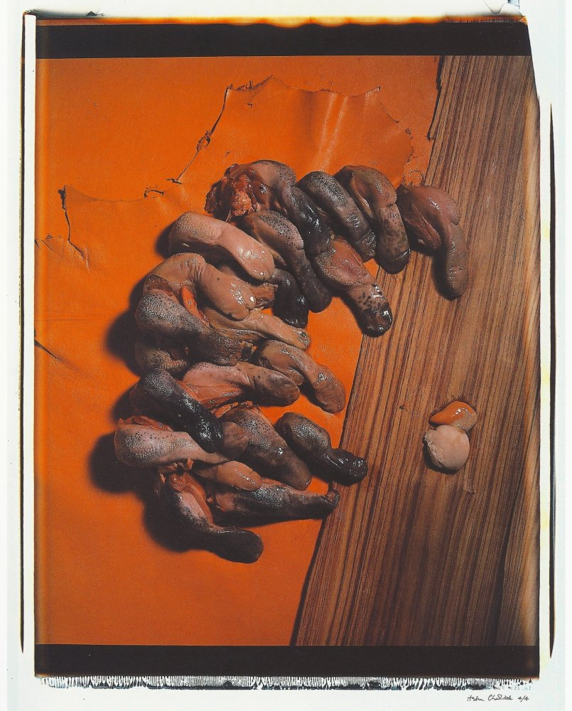 <div class=&#34;artist&#34;><strong>Helen CHADWICK</strong></div> 1953 - 1996 <div class=&#34;title&#34;><em>Meat Abstract No. 2: Tongues</em>, 1989</div> <div class=&#34;signed_and_dated&#34;>Signed edition 3 / 4</div> <div class=&#34;medium&#34;>Polaroid, silk mat</div> <div class=&#34;dimensions&#34;>81 x 71 cm<br />98 x 77 cm overall</div> <div class=&#34;edition_details&#34;>Edition of 4 with AP</div>