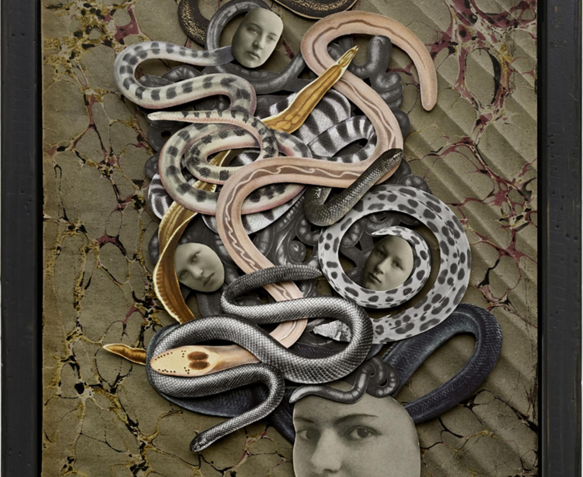 Hope Kroll, Medusa, 2019