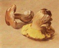 Funghi no.1, 1965