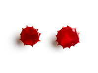 Blood Cufflinks, 2009