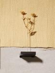 'Against Nature: Buttercup' Sculpture, Earrings & Pendant, 2019