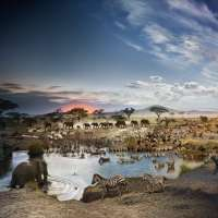 Serengeti National Park, Tanzania, Day to Night