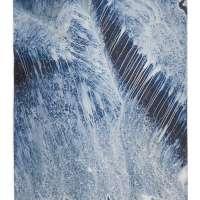 Ecotone #641 (Bainbridge Island, WA 03.08.19, Snow and Rain, Draped on Stump and Fern)