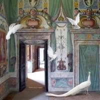 Immaculate Conception, Villa D'Este