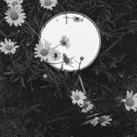 Mirror #62