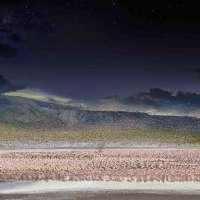 Lesser Flamingos, Lake Bogoria Kenya, Africa, Day to Night