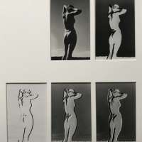 Series of 5 variants of a nude study