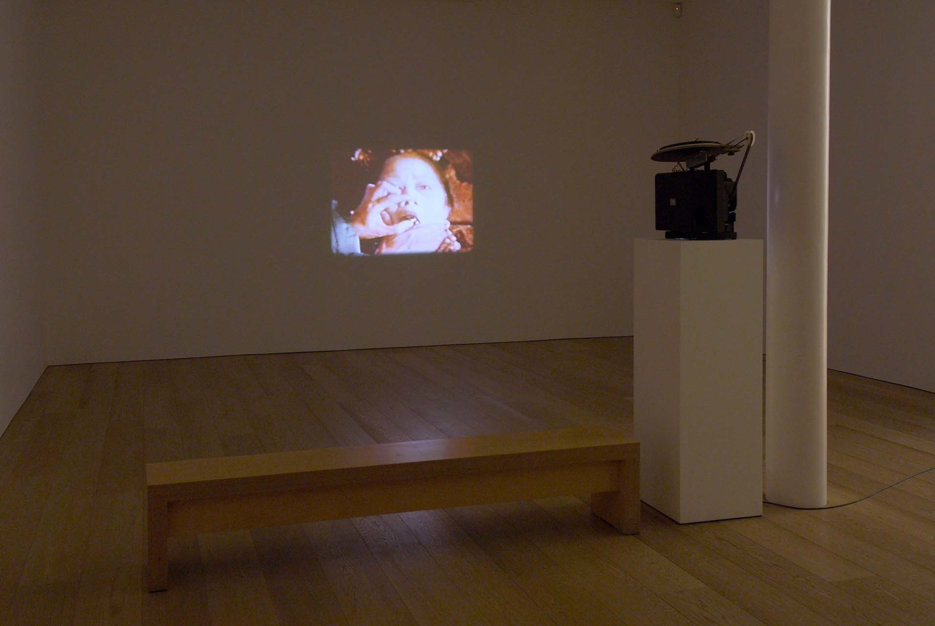 <p>Installation View, TJ Wilcox, <em>The Death and Burial of the First Emperor of China</em>, 1997</p>