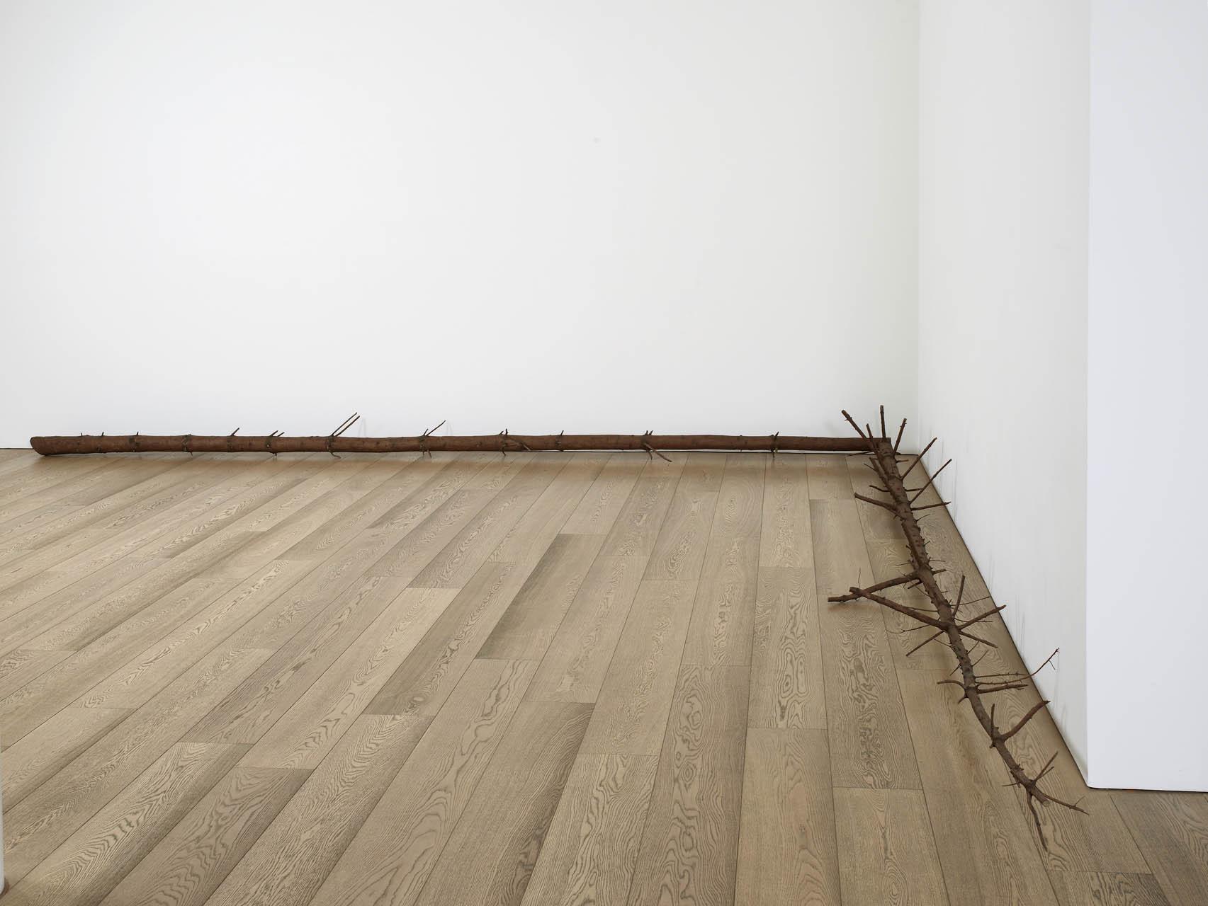 "<div class=""artwork_caption""><p>still.life. (pine tree laying in a corner), 2008</p></div>"