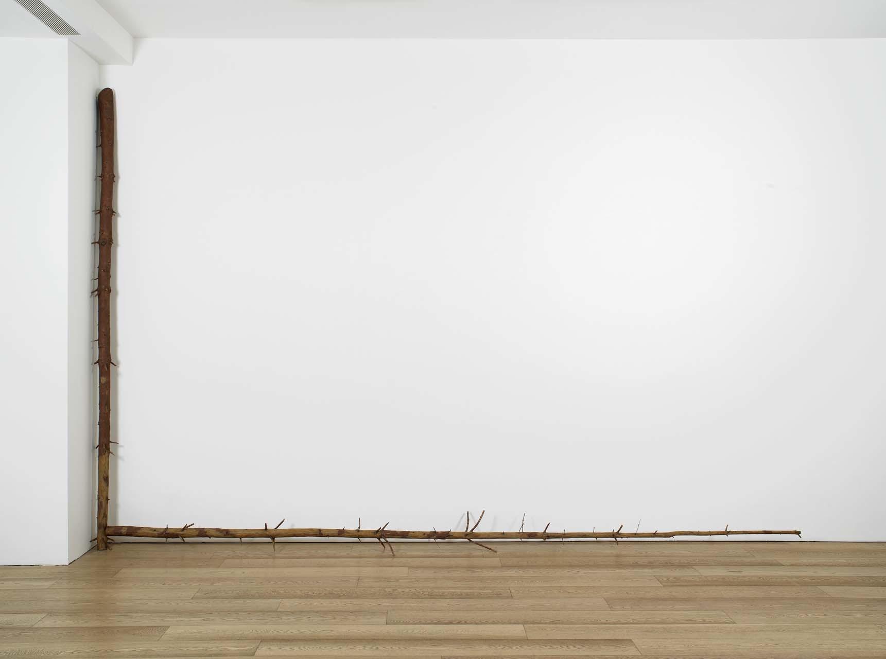 "<div class=""artwork_caption""><p>still.life. (pine tree standing in a corner), 2008</p></div>"