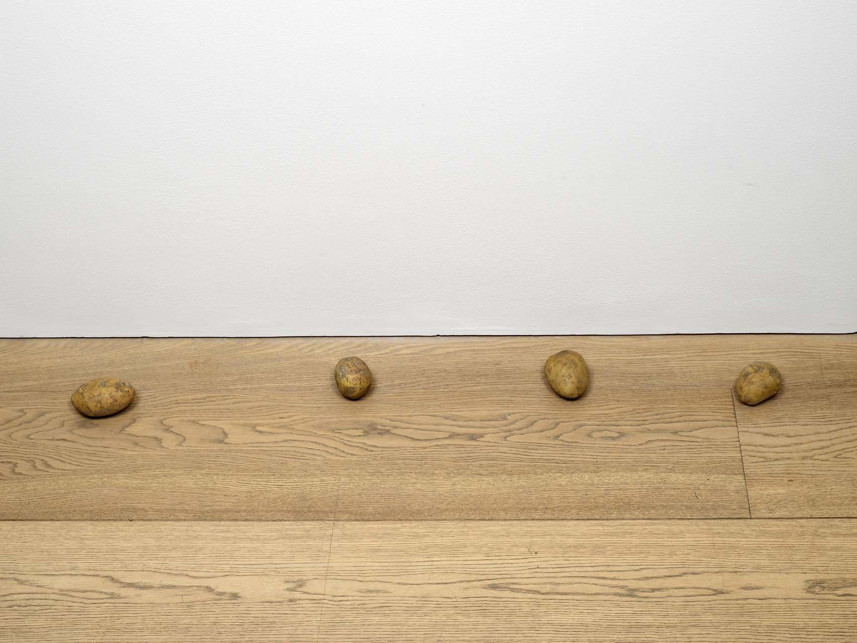 "<div class=""artwork_caption""><p>still.life. (four potatoes in a line), 2009</p></div>"