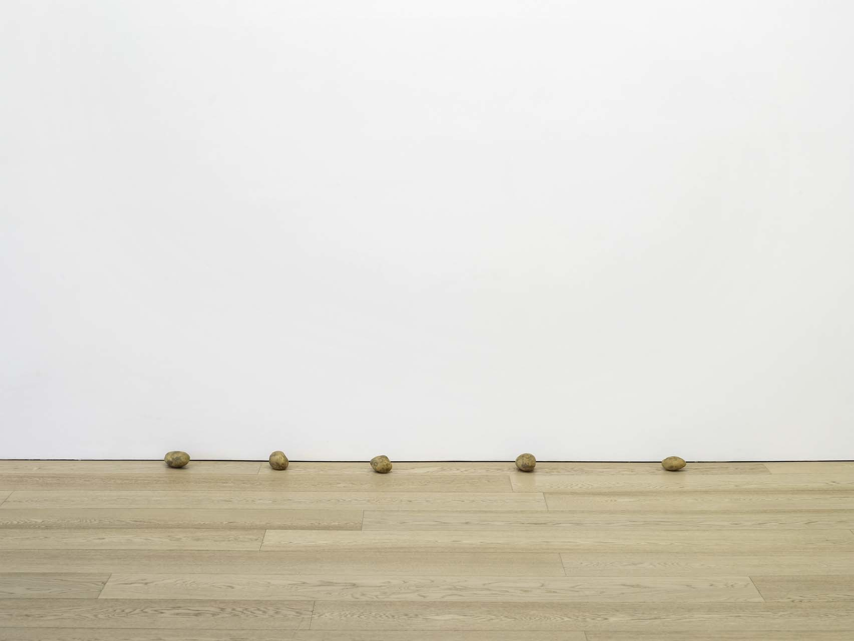 "<div class=""artwork_caption""><p>still.life. (five big potatoes in a line), 2009</p></div>"