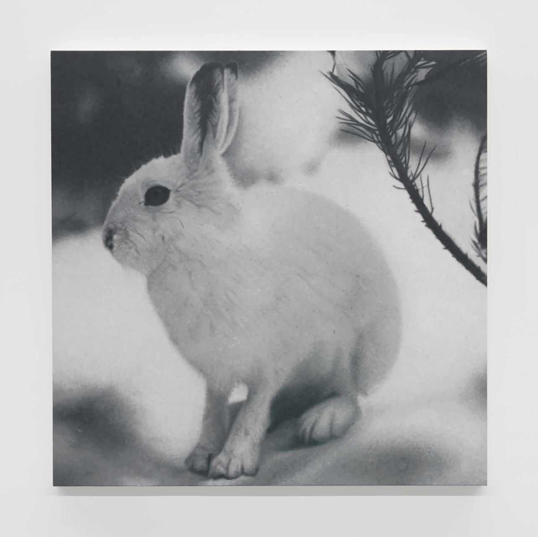 "<div class=""artwork_caption""><p>Untitled, 2015</p></div>"