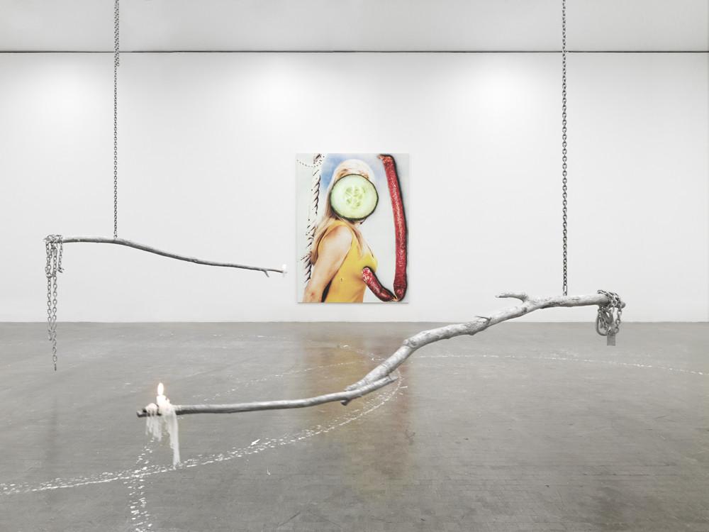 <p>Installation view, <em>Skinny Sunrise</em>, Kunsthalle Wien, Vienna, 2012</p>