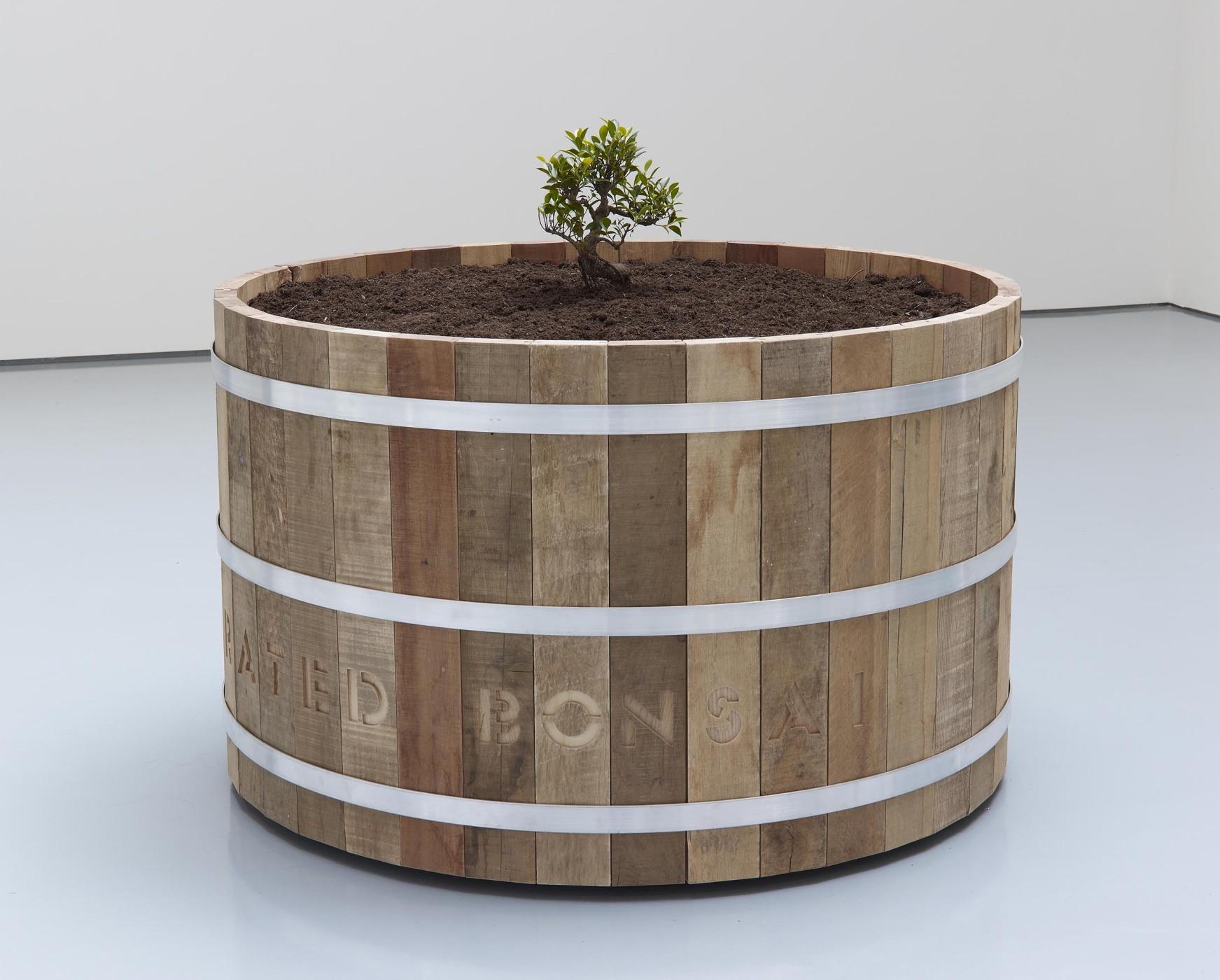 """<div class=""""title""""><em>Liberated Bonsai in Reclaimed Wood Barrel</em>, 2012</div><div class=""""medium"""">reclaimed wood, steel, Bonsai plant, compost</div><div class=""""dimensions"""">73.0 x 121.0 x 121.0 cm<br />28 3/4 x 47 5/8 x 47 5/8 in.</div>"""