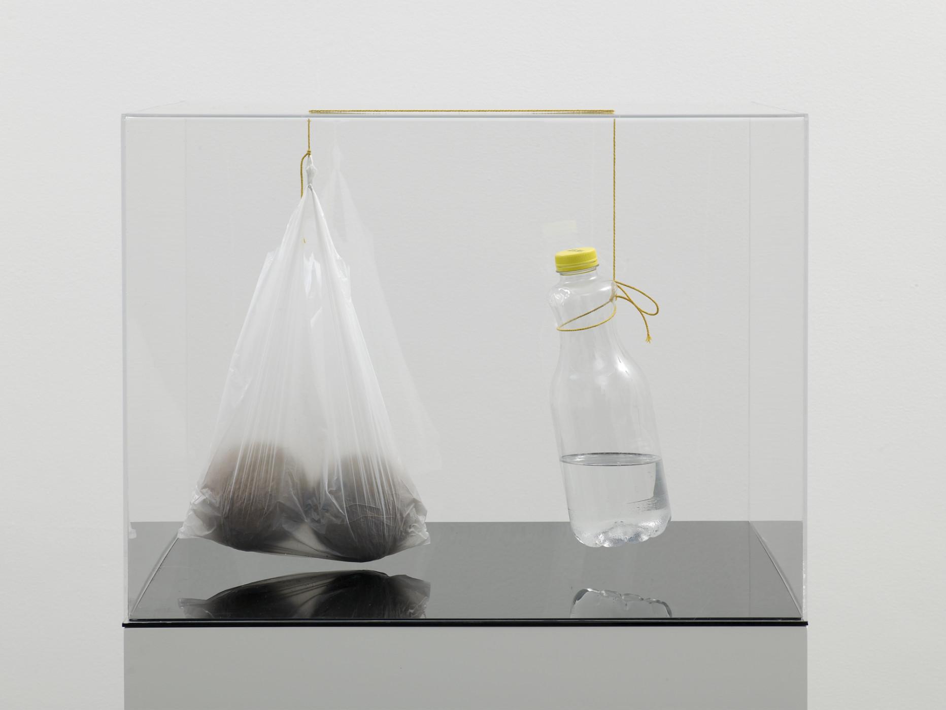 """<div class=""""title""""><em>SELF PORTRAIT AS A RETENTION AND FLOW DIAGRAM 3</em>, 2009</div><div class=""""medium"""">perspex, string, liquid, plastic bottle, plastic bag, coconuts</div><div class=""""dimensions"""">46.0 x 60.8 x 60.8 cm<br />18 1/8 x 23 7/8 x 23 7/8 in.</div>"""