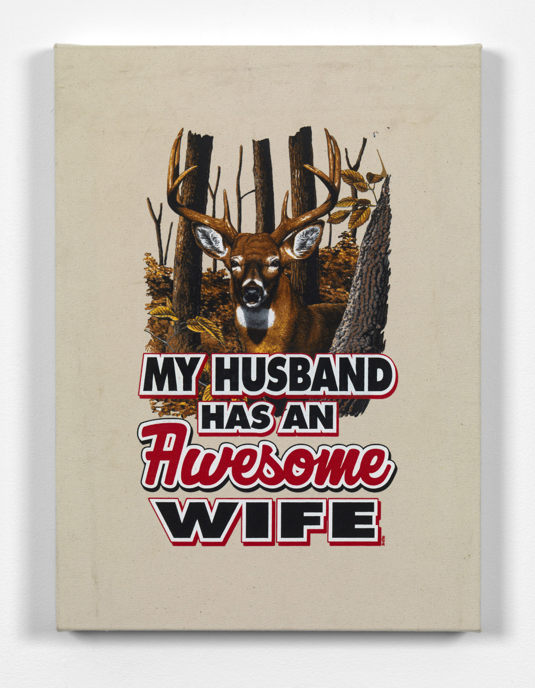 "<div class=""title""><em>What My Husband Has</em>, 2016</div><div class=""medium"">heat applied t-shirt graphic on canvas</div><div class=""dimensions"">66.0 x 48.0 x 5.4 cm<br />26 x 18 7/8 x 2 1/8 in.</div>"