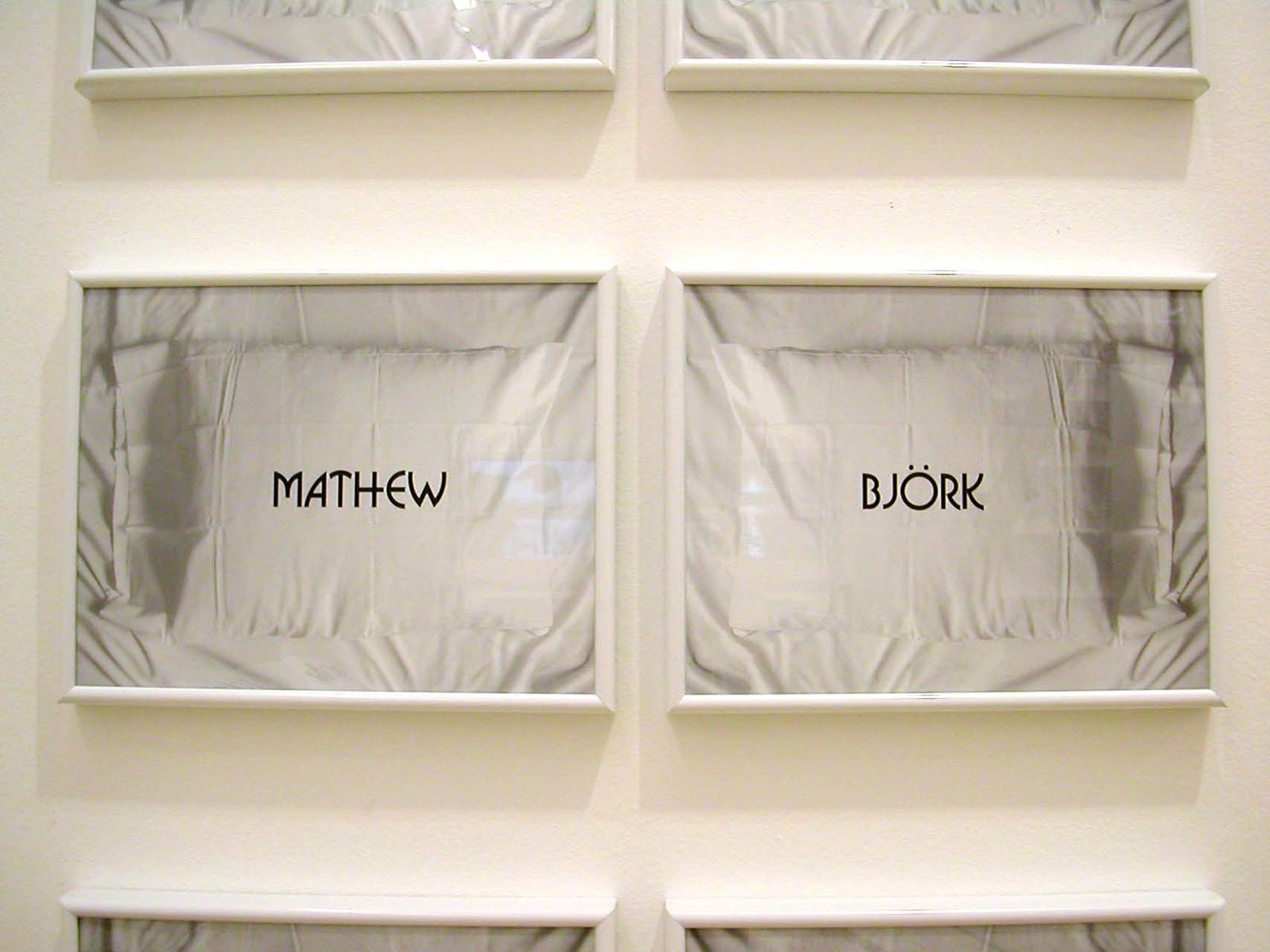 "<div class=""artwork_caption""><p>Matthew & Bjork, 2002</p></div>"
