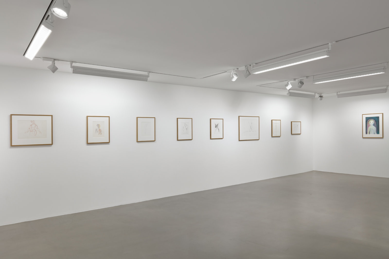 <p>Installation view, 2018</p><p>Photo by Robert Glowacki</p>