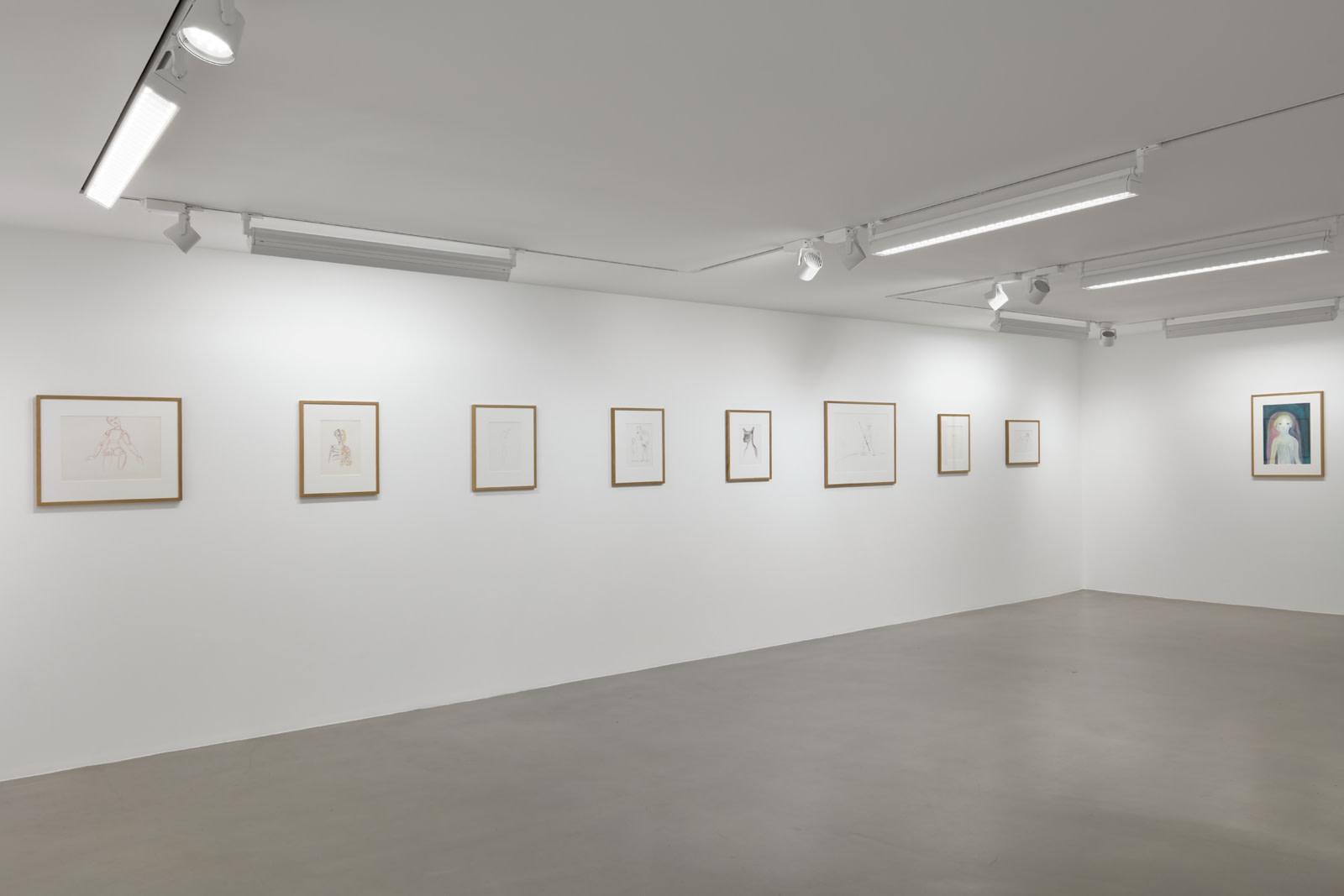 "<div class=""artwork_caption""><p>Installation view, 2018</p><p>Photo by Robert Glowacki</p></div>"