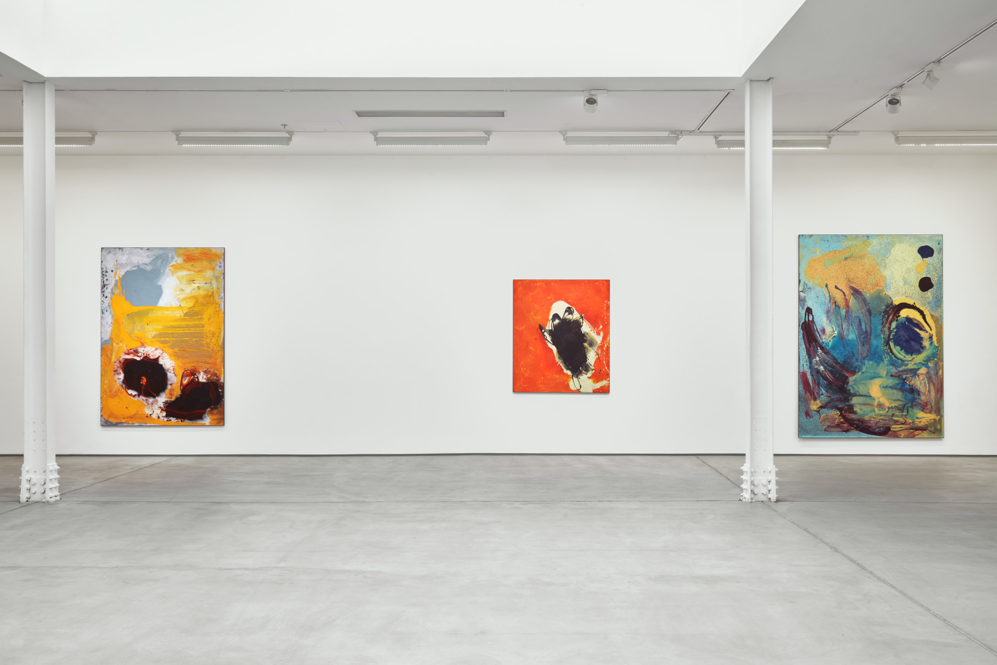 <p>Installation view, 2019<br />Photo by Robert Glowacki</p>