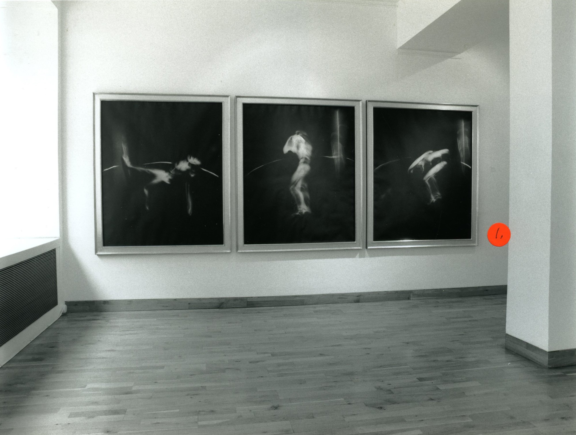 """<span class=""""link fancybox-details-link""""><a href=""""/exhibitions/155/works/image_standalone665/"""">View Detail Page</a></span><p>VICTOR SKREBNESKI 