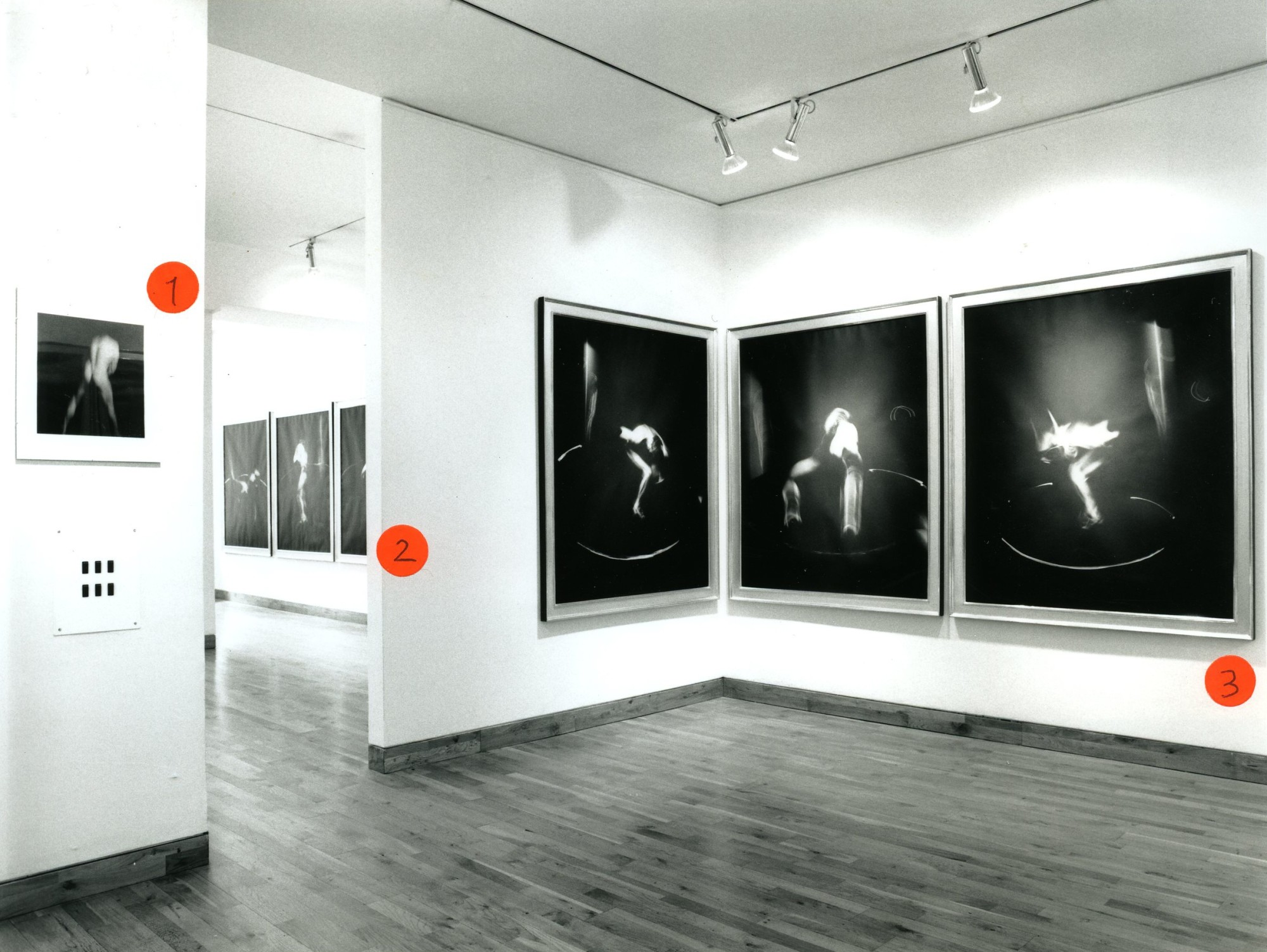 """<span class=""""link fancybox-details-link""""><a href=""""/exhibitions/155/works/image_standalone669/"""">View Detail Page</a></span><p>VICTOR SKREBNESKI 