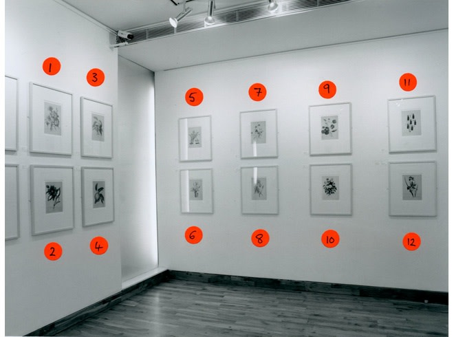 """<span class=""""link fancybox-details-link""""><a href=""""/exhibitions/167/works/image_standalone739/"""">View Detail Page</a></span><p>THIERRY RENARD 