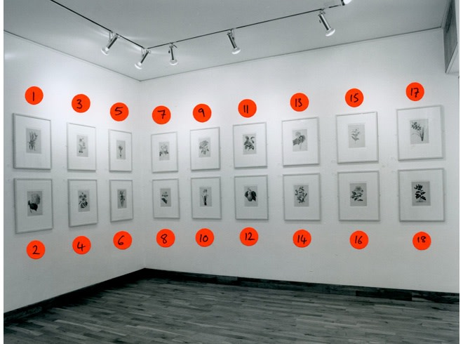 """<span class=""""link fancybox-details-link""""><a href=""""/exhibitions/167/works/image_standalone740/"""">View Detail Page</a></span><p>THIERRY RENARD 