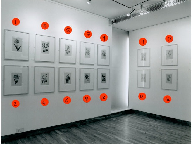 """<span class=""""link fancybox-details-link""""><a href=""""/exhibitions/167/works/image_standalone741/"""">View Detail Page</a></span><p>THIERRY RENARD 